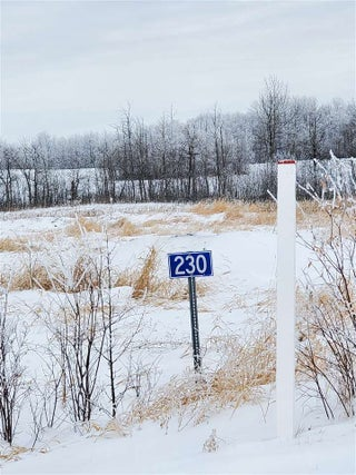 MLS® #E4221783 - 230 50509 Rge  Road  222 in Brightwood Estates Rural Leduc County
